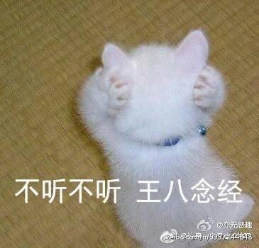 一款恶搞逗趣的表情包,表情包中有人有猫还有可达鸭,非常适合斗图使用