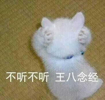 很火的猫表情表情公休包图片