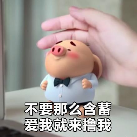 猪的聊天背景图可爱