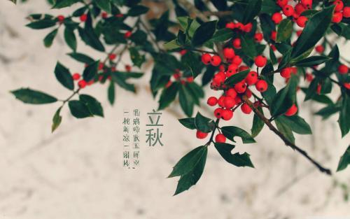 2017立秋图片带祝福语素材
