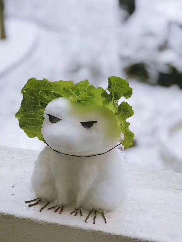 朋友圈旅行青蛙雪人图片